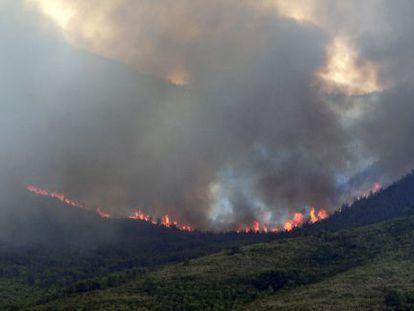 Incendio forestal en el sierra de Tivisa de hace quince día y que quemó 800 hectáreas.