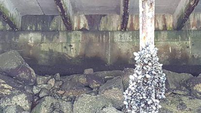 Estado ruinoso del muelle que sostiene el paseo marítimo de Vigo.