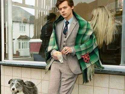 Harry Styles en su primera campaña para Gucci.