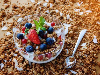 Algunos alimentos como el yogur incrementan la diversidad de las bacterias del intestino