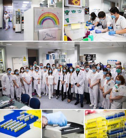 Departamento de virología del HUCA, donde se ha hecho un rastreo de la población para contener la enfermedad.