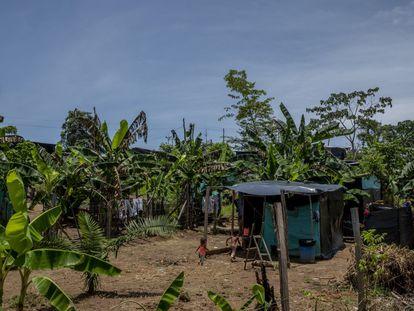 Tibú es uno de los municipios de la frontera entre Venezuela y Colombia más azotados por la violencia.