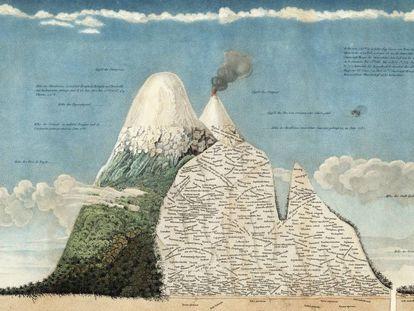 Detalle del 'Naturgemälde' de Humboldt.