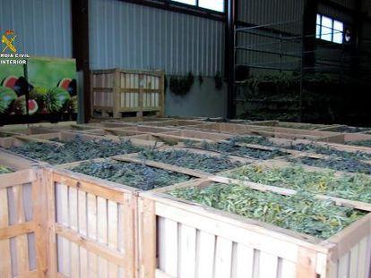 Cajas con parte de las cuatro toneladas de marihuana incautada por la Guardia Civil en Teruel, este viernes.