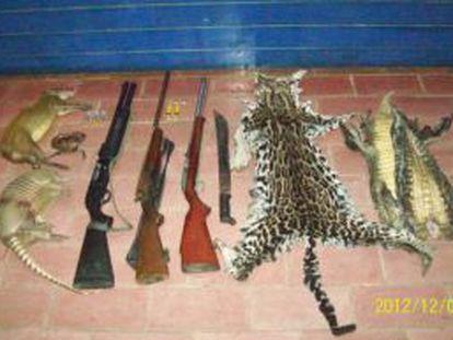 Restos de animales silvestres y armas decomisados, horas antes de que el Parlamento costarricense aprobara la ley que prohíbe la caza deportiva