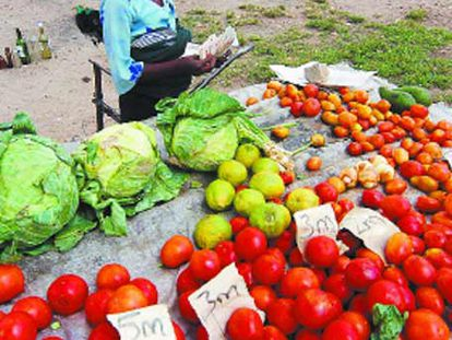 El kilo de tomates se vendía a millones de dólares el pasado miércoles en Harare.