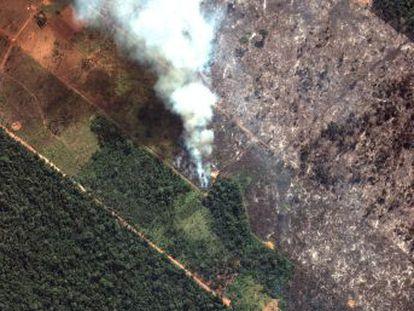 El presidente brasileño da marcha atrás y reconoce su responsabilidad en la gestión de los incendios que han consumido 20.000 hectáreas de selva