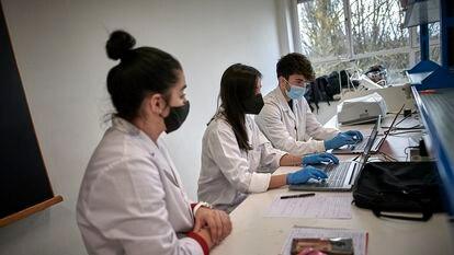 Alumnos de grado de Biotecnología de la Universidad Pública de Navarra durante unas prácticas.