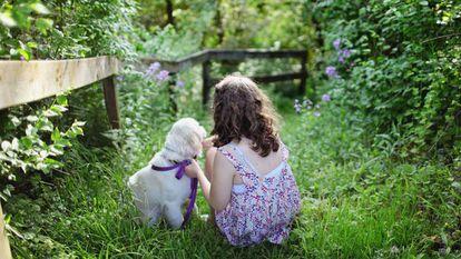 La mayoría de los dueños tiene la sensación de que su perro entiende todo lo que le dice.