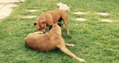 'Keko' y 'Natacha' departen sobre sus cosas.