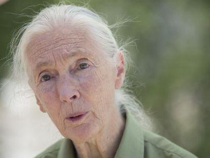 Jane Goodall, ayer, en el Museo Nacional de Ciencia y Tecnología.