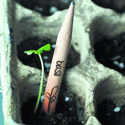 Lápiz, de la empresa Sprout, con semillas en su interior, que se planta una vez usado.