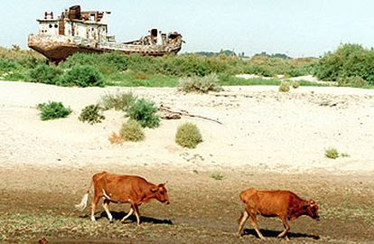 Aspecto de una parte desecada del mar de Aral.