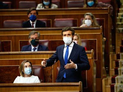 Pablo Casado en el pleno del Congreso de los Diputados, este 12 de mayo.