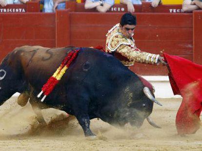 El diestro Miguel Ángel Perera, este domingo, da un pase a su primer astado en la corrida de la Feria Taurina de Hogueras de Alicante.