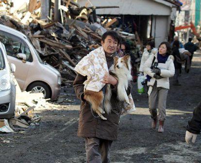 Un hombre camina con su perro en la ciudad de Kesennuma, en la prefectura de Miyagi tras la explosión en la central nuclear de Fukushima.