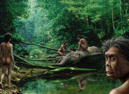 Los homínidos se desplazaron entre continentes, del africano pasaron al asiático.