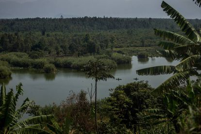 El parque nacional de Virunga, entre Ruanda, Uganda y la República Democrática del Congo.