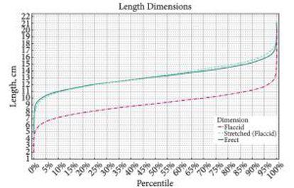 Gráfico del estudio que muestra la longitud de los 15.000 penes medidos, con 13 centímetros en la media.