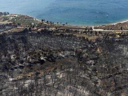 Colinas quemadas por uno de los incendios forestales de la isla griega de Eubea, el día 12.