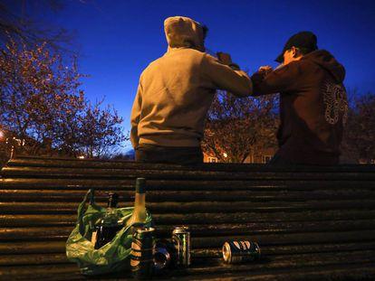 Unos adolescentes hacen botellón en un parque de la capital.