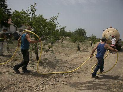 José Antonio Esteban, Luis Velasco, David de la Calle, Álvaro Cuesta, Fran Valderrama y Juan Esteso forman un grupo para regar los 10.000 árboles plantados con una cuba de agua de 14.000 litros.