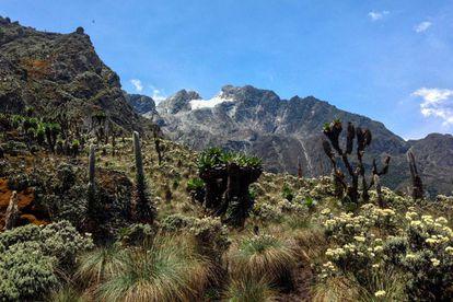 Pico Stanley, la cima de la cordillera Ruwenzori, en África