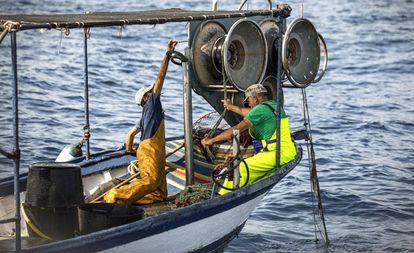 Un pesquero faenando en aguas de Dénia (Alicante).