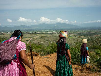 Mujeres zapotecas caminan por la comunidad de San Marcos Tlapazola, en Oaxaca, en agosto de 2019.