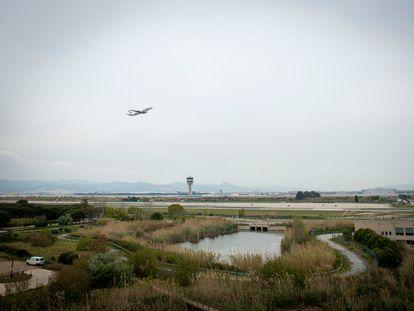 Un avión despega de El Prat y sobrevuela un humedal habitado por flamencos