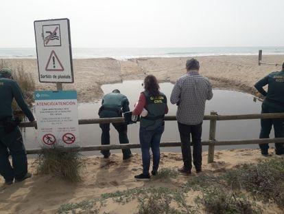 Agentes del Seprona toman muestras en la playa de Castelldefels el pasado jueves.