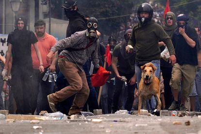 <i>Lukánikos</i> se ha convertido en uno de los protagonistas de las manifestaciones en Atenas. El can, que vive en la plaza dónde se realizan la mayoría de las protestas, y que está al cuidado del ayuntamiento ateniense, se pone en todas las protestas de parte de los manifestantes.