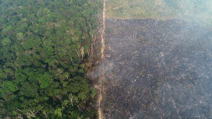 Vista general de un tramo de la selva amazónica que arde cuando los madereros y agricultores la talan cerca de Apui, Brasil, el 11 de agosto de 2020.