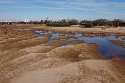 Una de las zonas de mayor impacto es el Paraná Viejo, el curso del río que rodea por atrás a la isla que está frente a Rosario, la segunda ciudad más importante de Argentina.