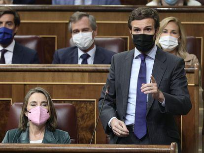 El líder del PP, Pablo Casado, interviene en una sesión de control al Gobierno en el Congreso de los Diputados, este jueves en Madrid.