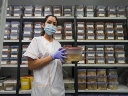 Banco de Cerebros de la Fundación Hospital de Alcorcón. En la imagen, la técnico de anatomía patológica, Nuria Nogales en el almacén de los hemisferios izquierdos.