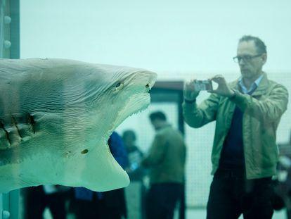 'The Physical Impossibility of Death in the Mind of Someone Living', el cadáver de un tiburón que el británico Damien Hirst metió en un tanque de formaldehido en la Tate Modern de Londres.