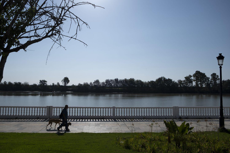 Un hombre camina por el paseo fluvial de Coria del Río.