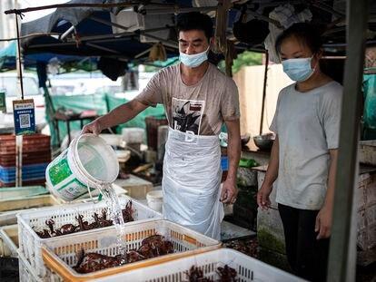 Un puesto de marisco en un mercado al aire libre de la ciudad de Wuhan (China), el 31 de mayo.