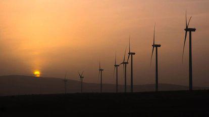 Los molinos de viento que hay junto a Campisábalos.