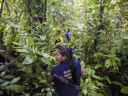 Miembros de la guardia indígena avanzan hacia el último punto en la selva al que pueden llegar sin temor a pisar una mina antipersona.