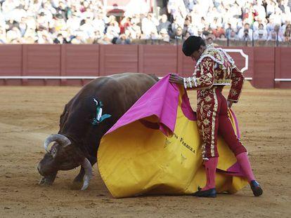 El diestro Antonio Ferrera da un pase de verónica a  su segundo toro, quinto de la tarde.