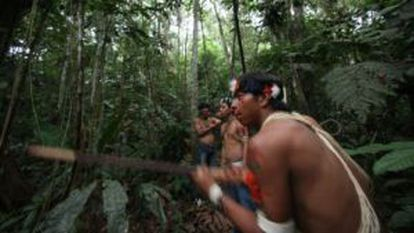 Los indios waorani habitan la reserva de Yasuní en la amazonía ecuatoriana.