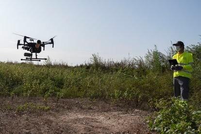 Un técnico vuela un dron para fumigar contra el mosquito en la localidad sevillana de Coria del Río.