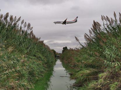 Un avión sobrevuela un humedal del delta del Llobregat durante su aterrizaje en El Prat.