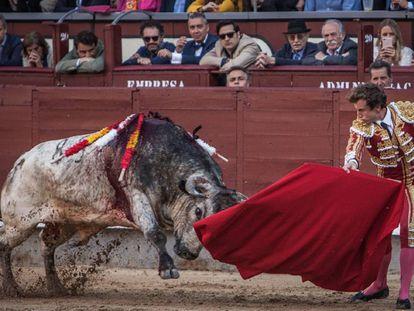 Toro Tiznaolla, de Miura, lidiado por Román el 3 de junio de 2018, en Las Ventas.