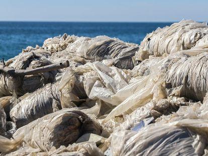 Plásticos en la playa de La Habana, en Adra.