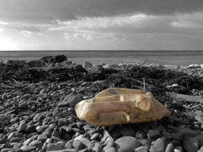 Restos de plástico en una playa.