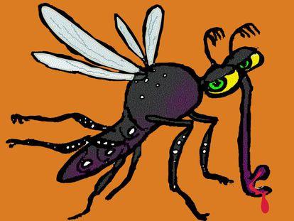 Ilustración de un 'Aedes aegypti', el mosquito que transmite el dengue, el Zika, la fiebre amarilla y el chikungunya.