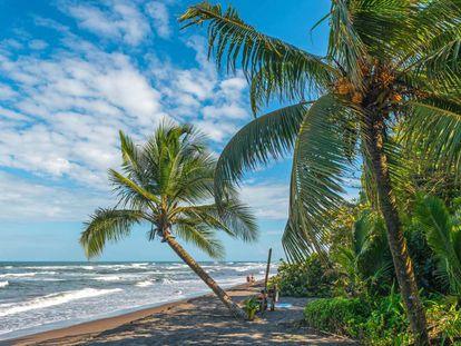 Playa de Tortuguero, municipio en el que veraneaba la turista española hallada muerta este sábado.